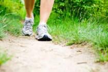 Beweging, het ultieme medicijn